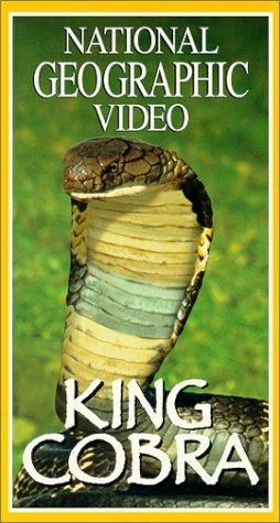 9780792252023: King Cobra [VHS]
