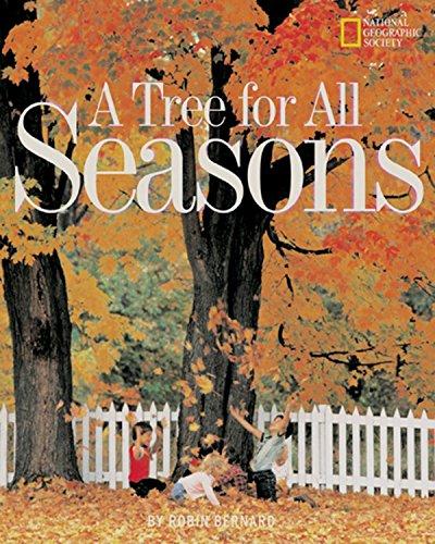 Tree For All Seasons (Avenues): Robin Bernard