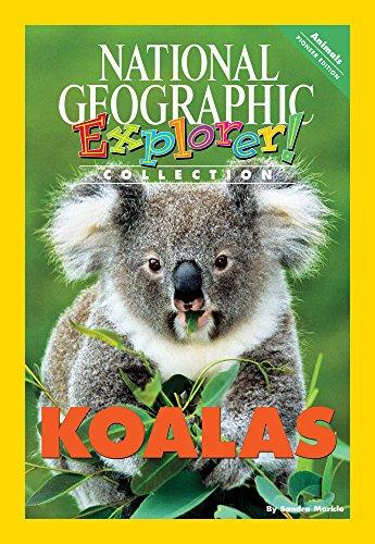 Explorer Pioneer: Koalas: Thompson, Sylvia Linan, Short, Deborah J, Lesaux, Nonie K, Frey, Nancy, ...
