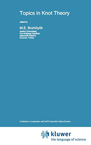 9780792322856: Topics in Knot Theory (Nato Science Series C:)