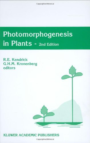 9780792325505: Photomorphogenesis in Plants