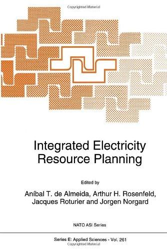 Integrated Electricity Resource Planning: Anibal T. de Almeida, Arthur H. Rosenfeld, Jacques ...
