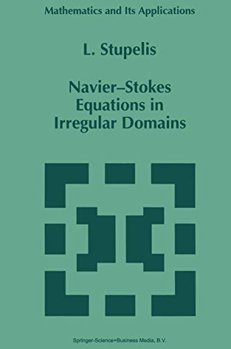 Navier-Stokes Equations in Irregular Domains: L. Stupelis