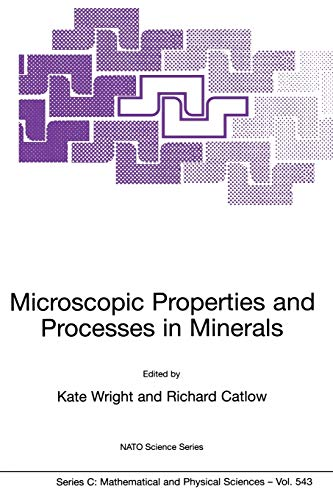 Microscopic Properties and Processes in Minerals (Nato Science Series C:): Springer