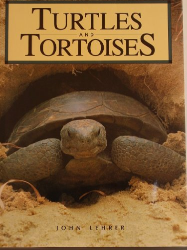 9780792452904: Turtles and Tortoises