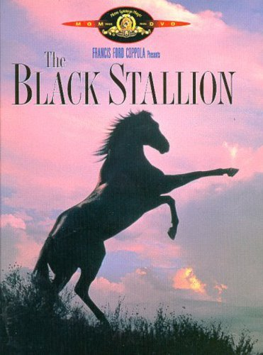 9780792833758: Black Stallion, The