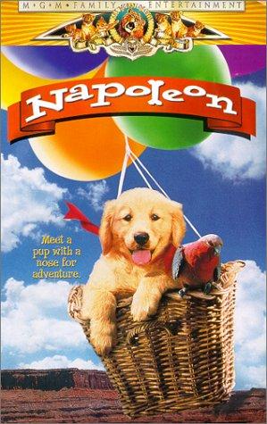9780792841890: Napoleon [VHS]