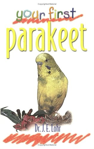 Your First Parakeet