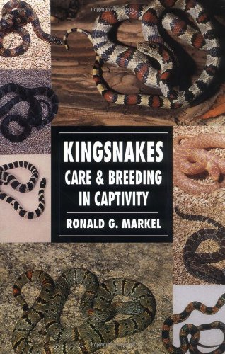 9780793802760: Kingsnakes: Care and Breeding in Captivity