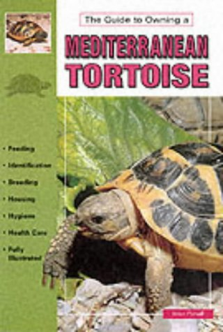 Mediterranean Tortoises: B. Pursall