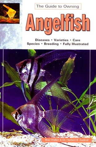 9780793803699: The Guide to Owning Angelfish: Disease, Varieties, Care, Species, Breeding