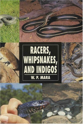 9780793820627: Racers, Whipsnakes and Indigos (Herpetology series)