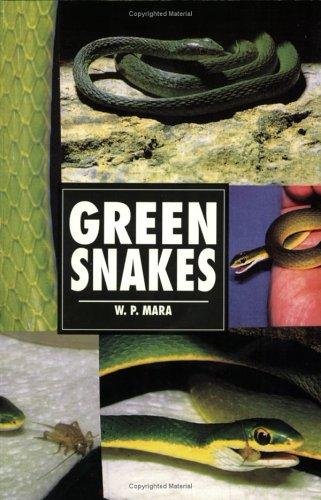 9780793820733: Green Snakes (Herpetology series)