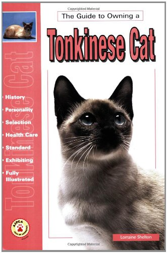 The Guide to Owning a Tonkinese Cat: Shelton, Lorraine
