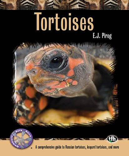 9780793828630: Tortoises: A Comprehensive Guide to Russian Tortoises, Leopard Tortoises, and More