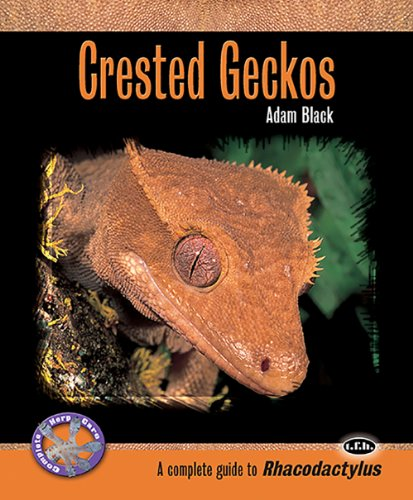 9780793828814: Crested Geckos