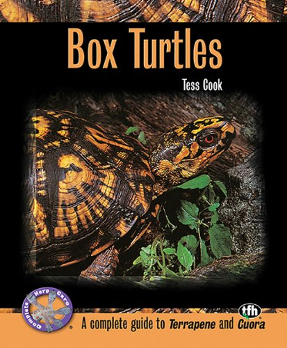 9780793828951: Box Turtles (Complete Herp Care)