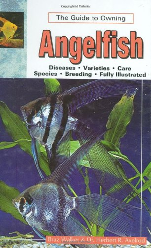 9780793833535: The Guide to Owning Angelfish