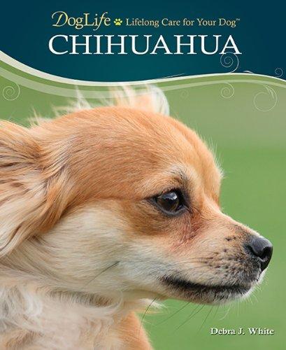 9780793836055: Chihuahua