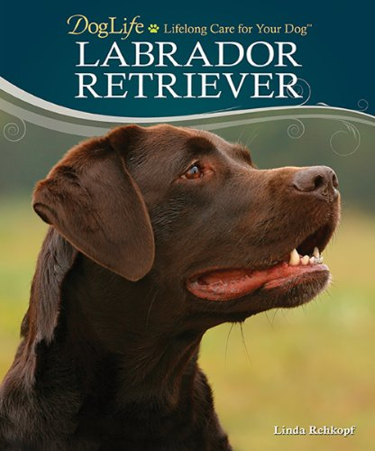9780793836086: Labrador Retriever (DogLife: Lifelong Care for Your Dog™)