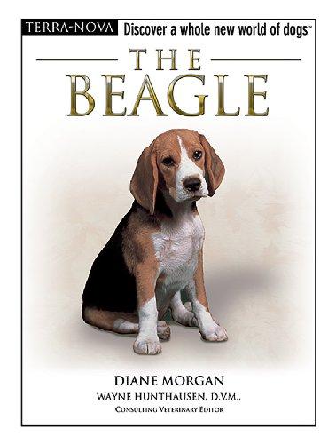 9780793836277: The Beagle (Terra-Nova)