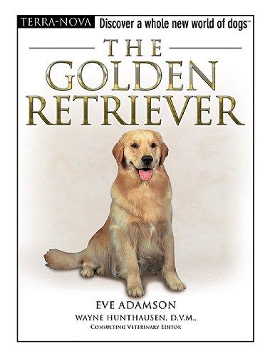 9780793836345: The Golden Retriever (Terra-Nova)
