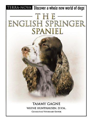 9780793836864: The English Springer Spaniel (Terra-Nova)