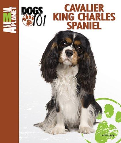 9780793837151: Cavalier King Charles Spaniel (Animal Planet Dogs 101)