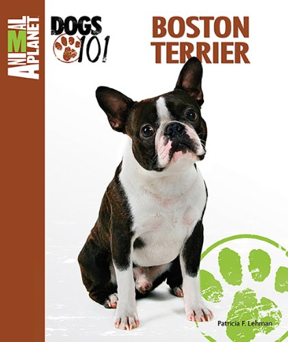 9780793837328: Animal Planet Dogs 101 Boston Terrier