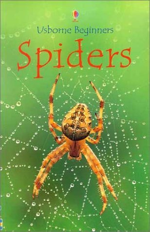 9780794501679: Spiders (Usborne Beginners)
