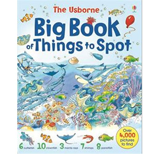 9780794503529: Big Book of Things to Spot (1001 Things to Spot)