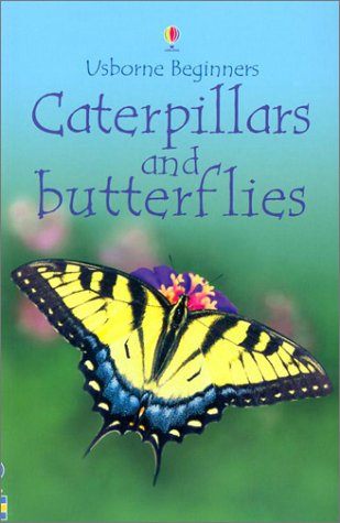9780794503789: Caterpillars and Butterflies (Usborne Beginners)