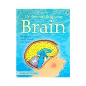 9780794508531: Understanding Your Brain (Science for Beginners)