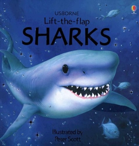 9780794511098: Sharks (Usborne Lift-the-Flap Learners)