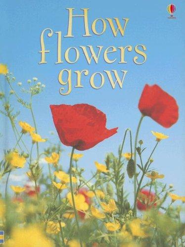 9780794513405: How Flowers Grow (Usborne Beginners, Level 1)