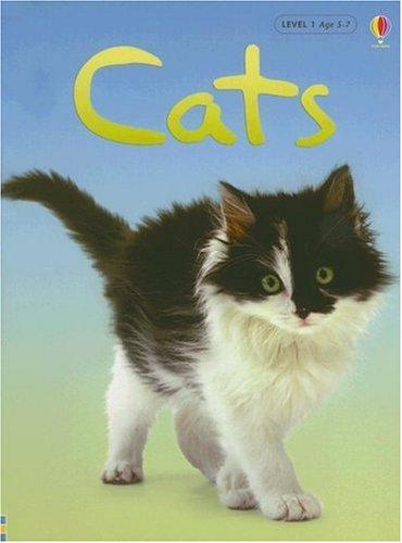 9780794513948: Cats (Usborne Beginners, Level 1)