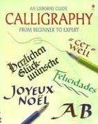 9780794514044: An Usborne Guide Calligraphy from Beginner to Expert