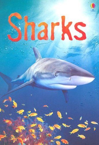 9780794515812: Sharks: Information for Young Readers - Level 1 (Usborne Beginners)