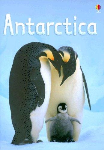 9780794516918: Antarctica (Usborne Beginners)