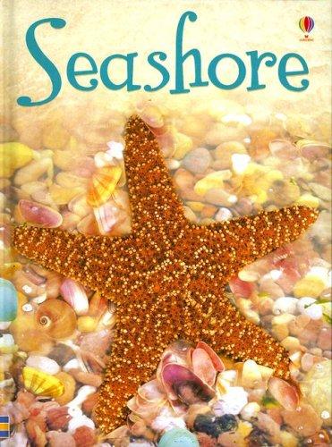 9780794520618: Seashore (Usborne Beginners)