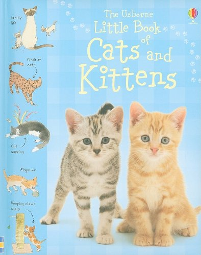 9780794522995: The Usborne Little Book of Cats and Kittens