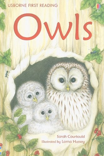 9780794525026: Owls (Usborne First Reading: Level 4)