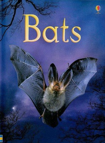 9780794525415: Bats (Usborne Beginners Nature)