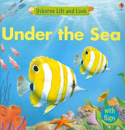 9780794525767: Under the Sea (Usborne Lift and Look Board Books)