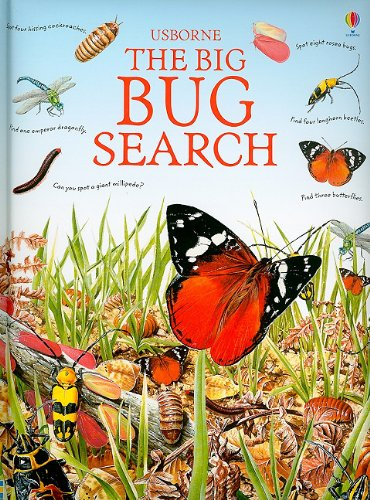 9780794527242: The Big Bug Search (Great Searches)