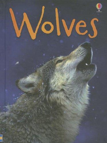 9780794534028: Wolves (Usborne Beginners)