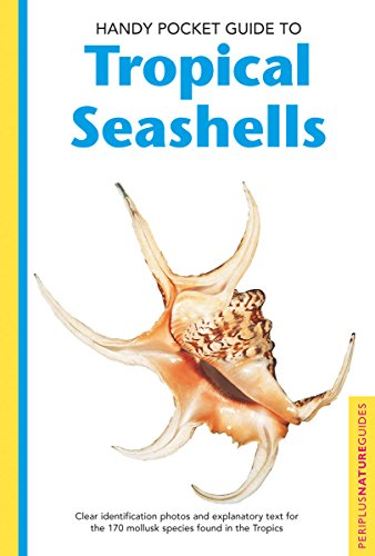 9780794601935: Handy Pocket Guide To Tropical Seashells (Periplus Nature Guides)