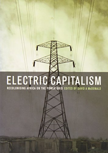 9780796922373: Electric Capitalism