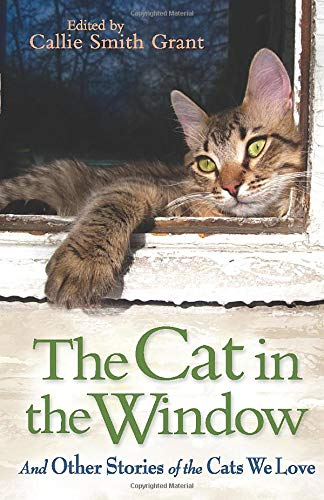 9780800721800: The Cat in the Window: And Other Stories of the Cats We Love
