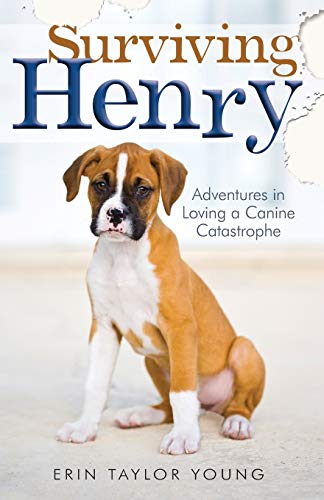 Surviving Henry: Adventures in Loving a Canine Catastrophe: Erin Taylor Young